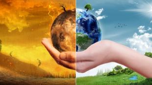 Zero Carbon Project: Review