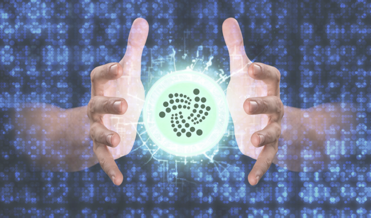 """IOTA Lead Developer: """"We want slow growth, not crazy growth that has no basis in reality"""""""