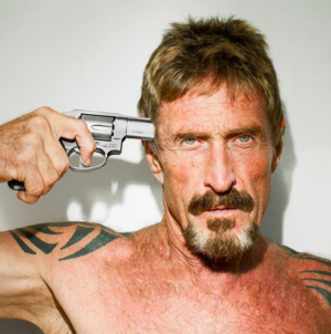 "McAfee to Use 2020 Presidency Bid as ""Platform for Crypto"""