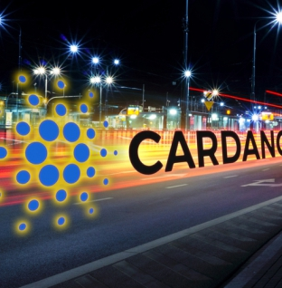 Foundation Chairman's Resignation Restores Equilibrium to Cardano Project
