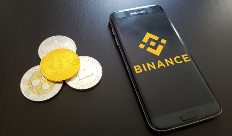 Binance Coin is Now the Only Top 50 Crypto with Positive Returns for 2018