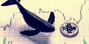 Spiking's Token Oversubscribed in Whale of a Sale